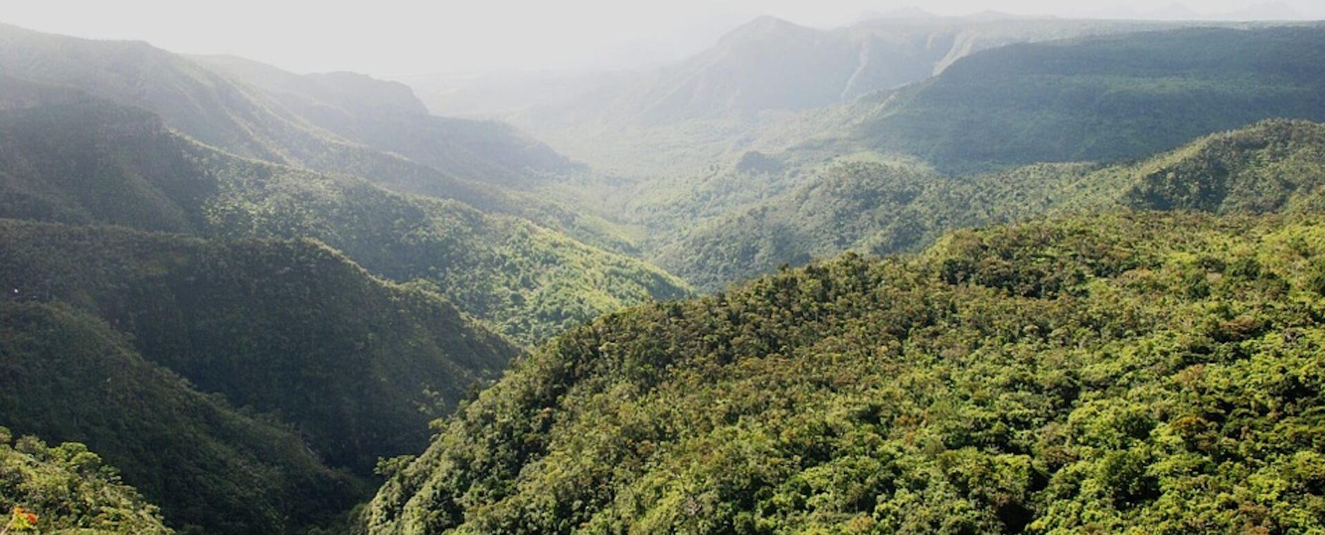 Ile aux Aigrettes - Mauritius