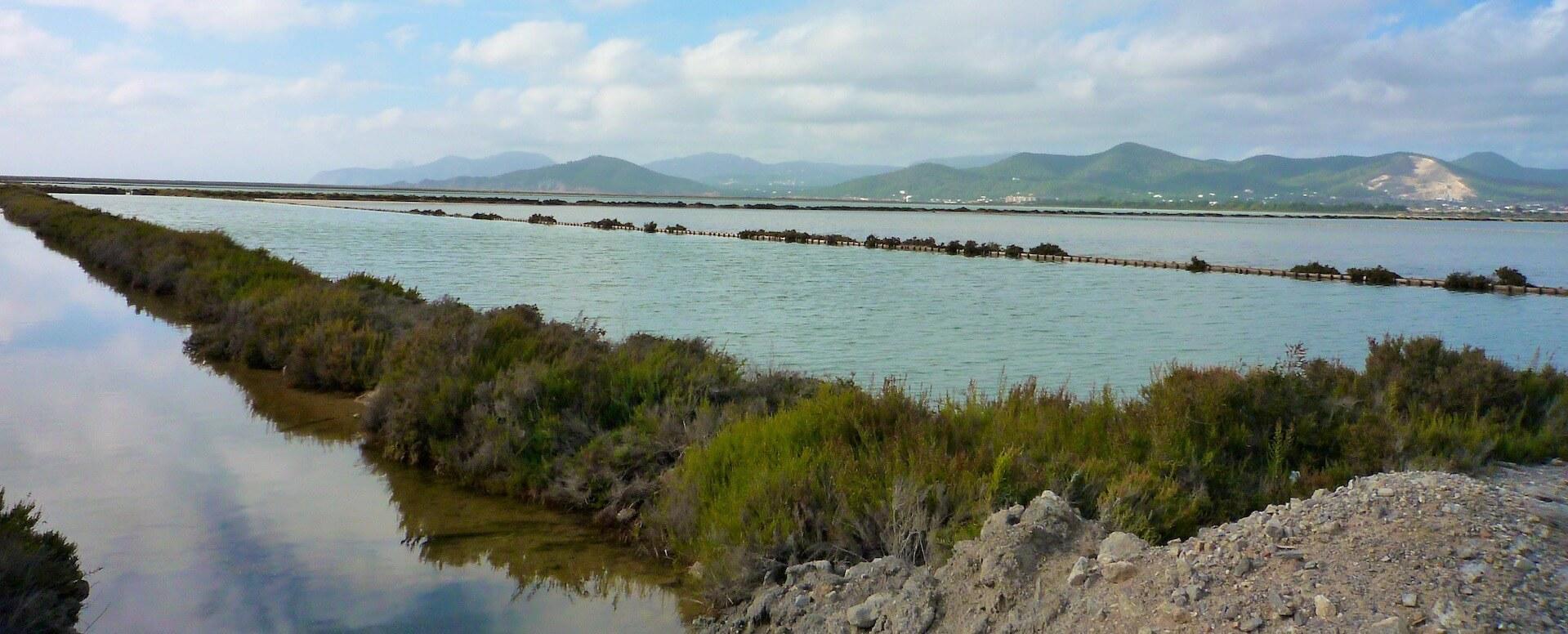 Le parc naturel des Salines - Ibiza