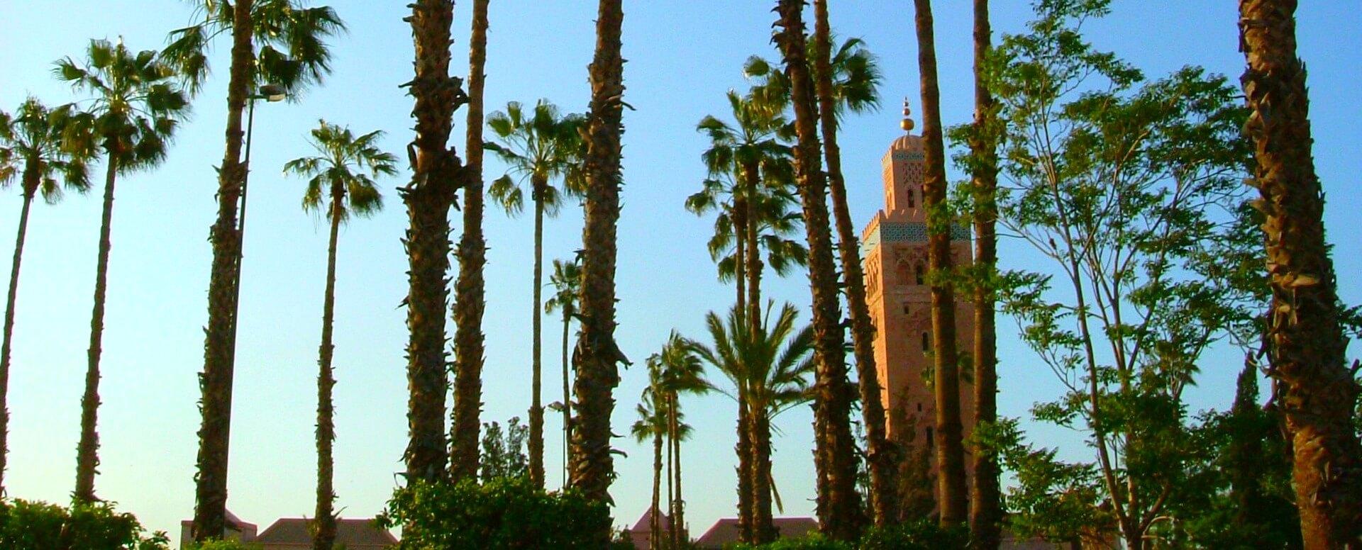 Temps et climat à Marrakech - Marrakech