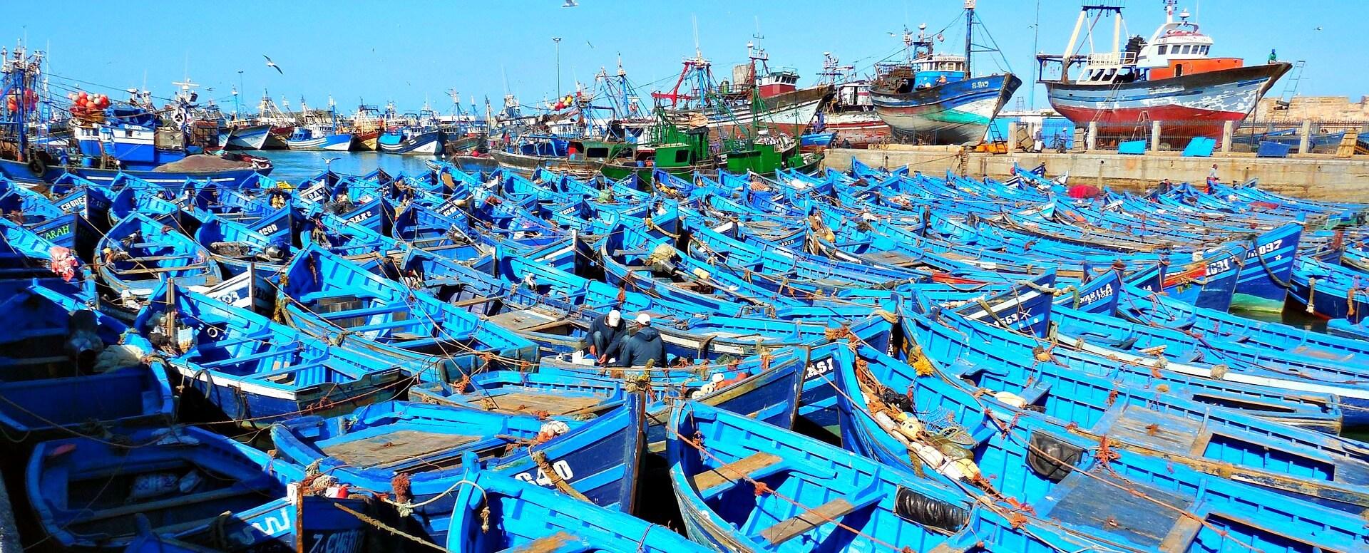 4. Explorer le marché de pêche et le port - Essaouira