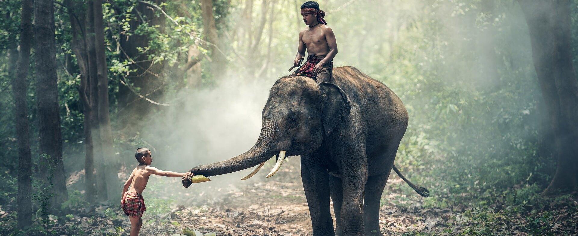 Les activités à faire au Cambodge - Cambodge