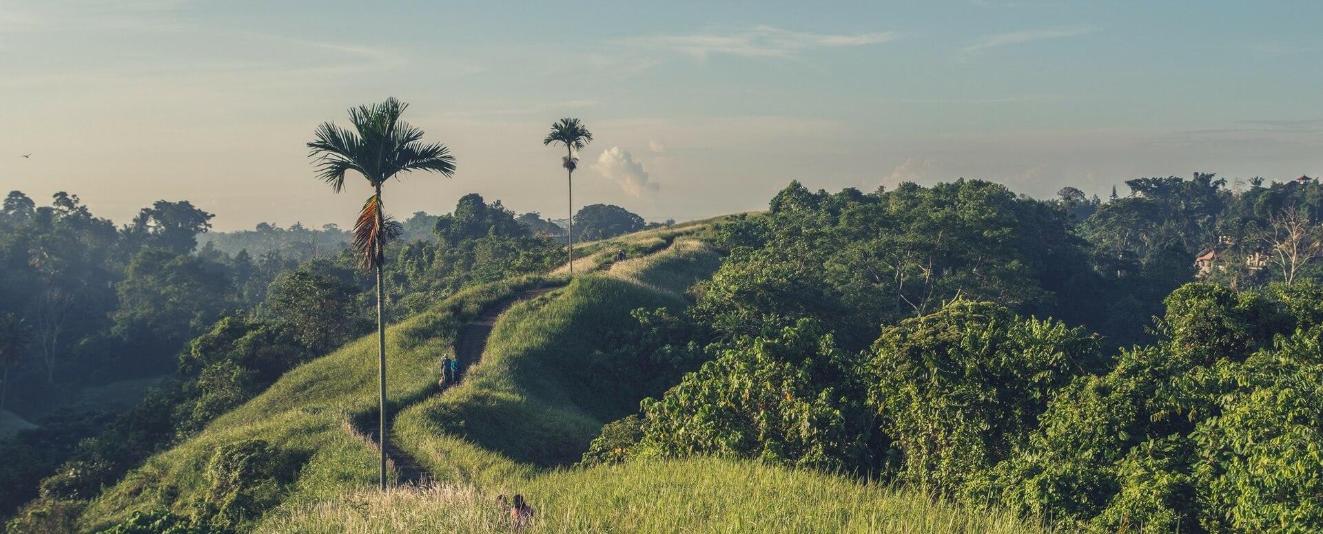 Trek à Bali - Bali