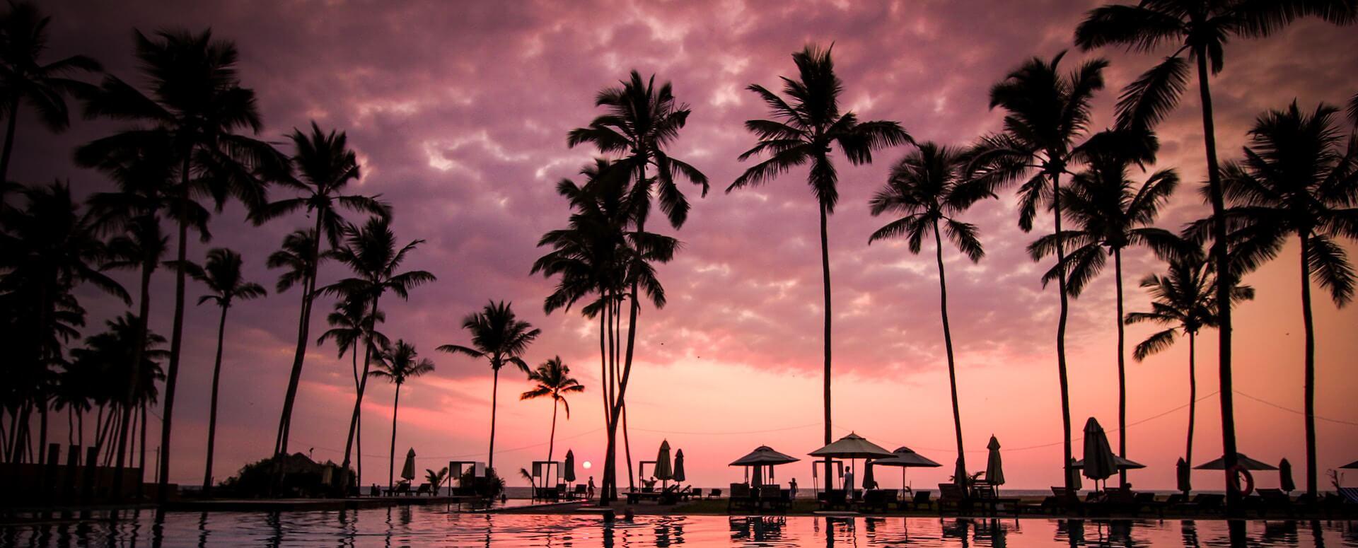 Découvrez les lieux à visiter absolument au Sri Lanka - Sri Lanka