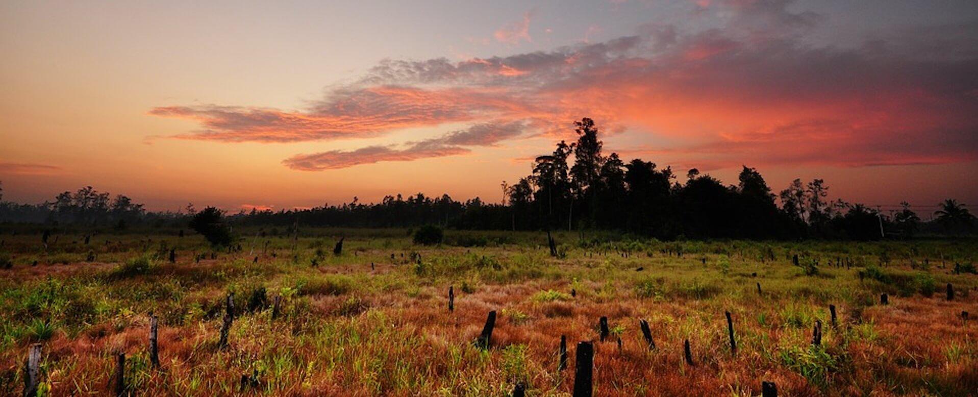 Kalimantan - Indonésie