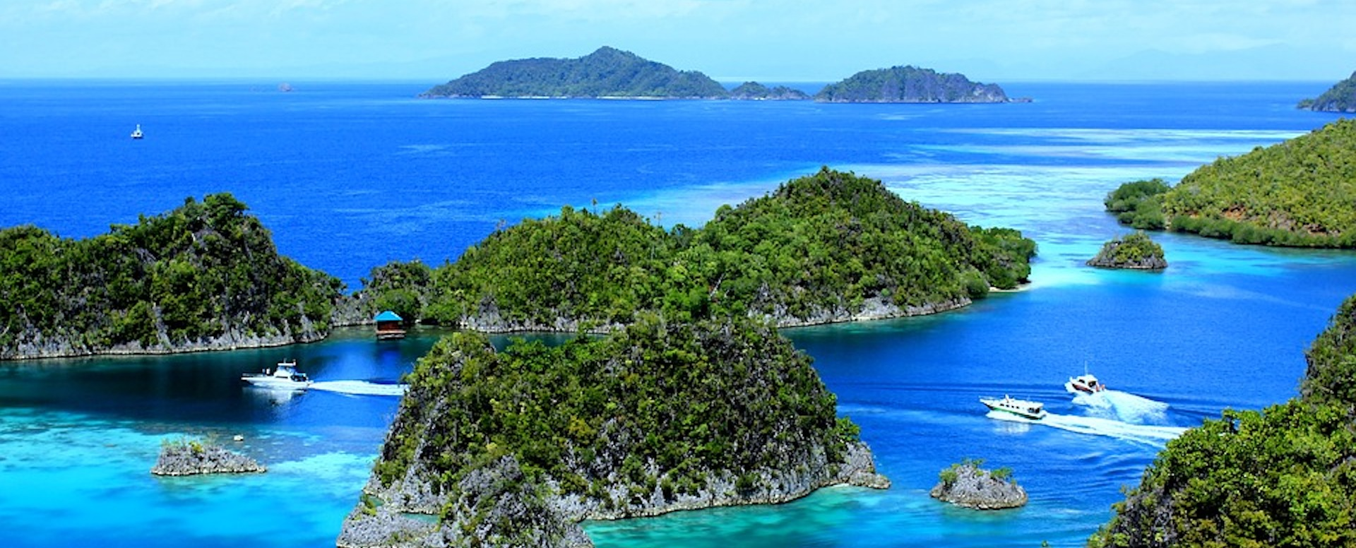 Papouasie - Indonésie
