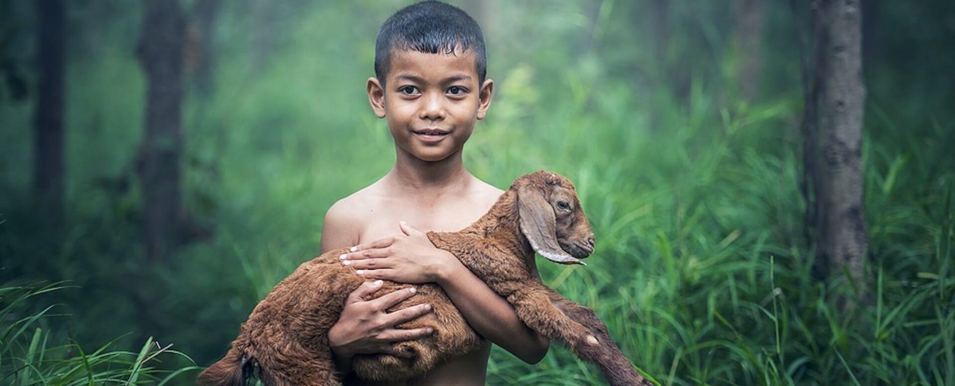 Tout ce que vous ignorez sur l'Indonésie - Indonésie