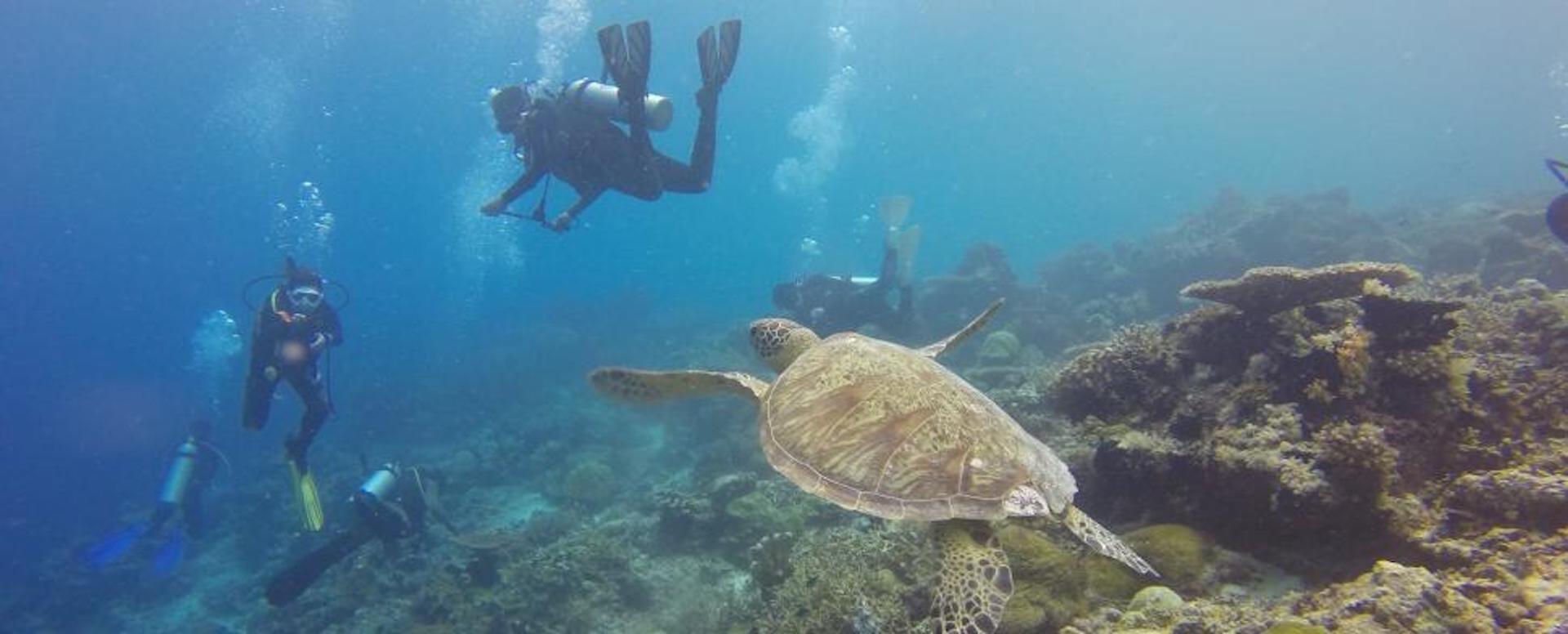 Indulge in water sports - Indonesia