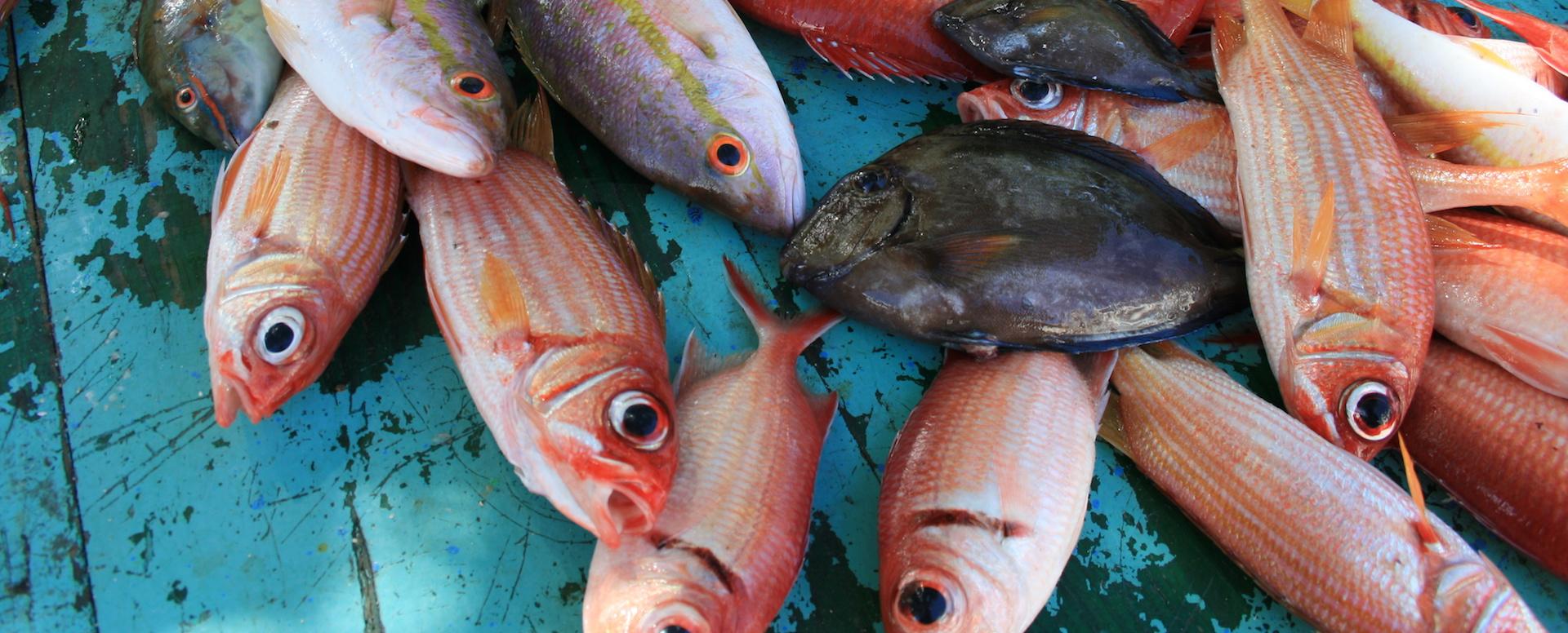 Quelques plats traditionnels - Martinique