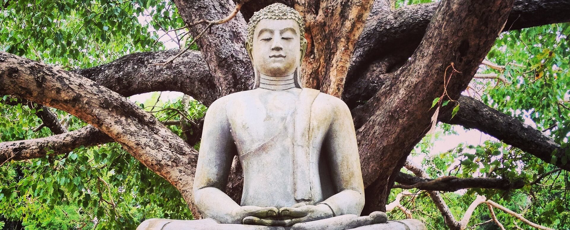 2. Découvrir Landy et le temple de la dent de Bouddha - Sri Lanka