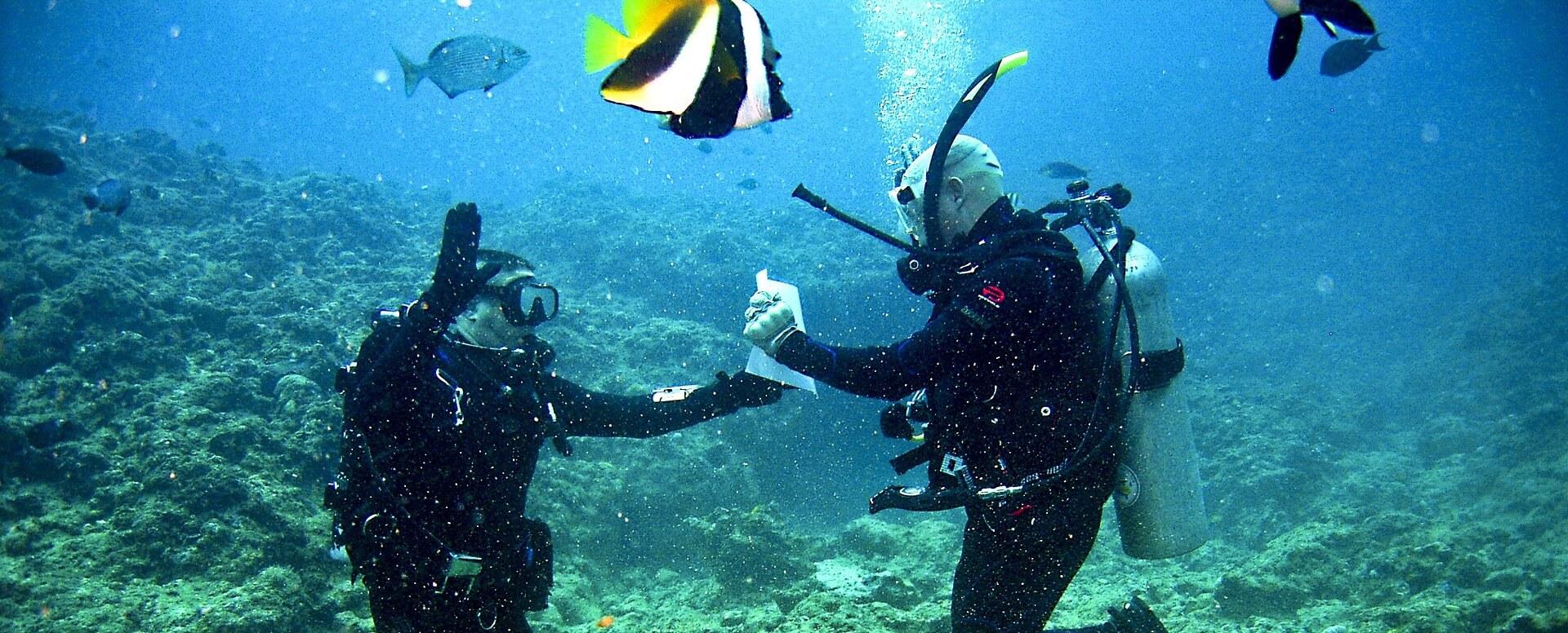 4. Faire de la plongée sous-marine - Seychelles