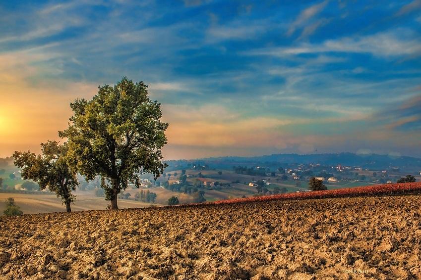 14. Regard sur les paysages de l'Ombrie