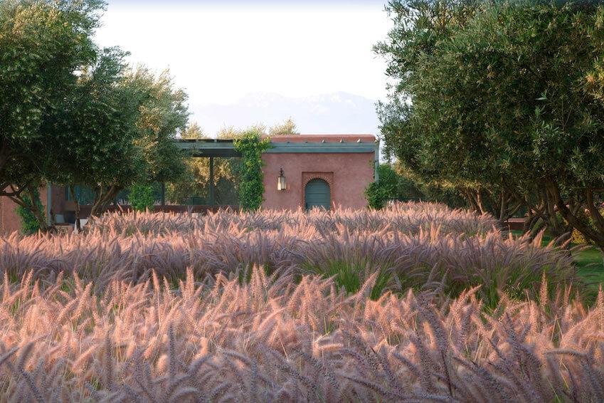 An historic villa for Villanovo