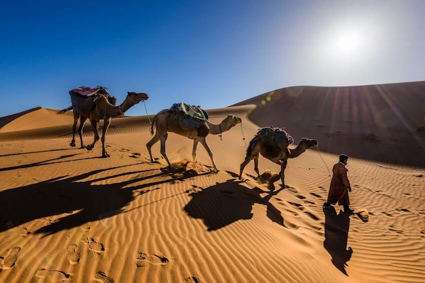 When to go to Marrakech for a dream holiday?