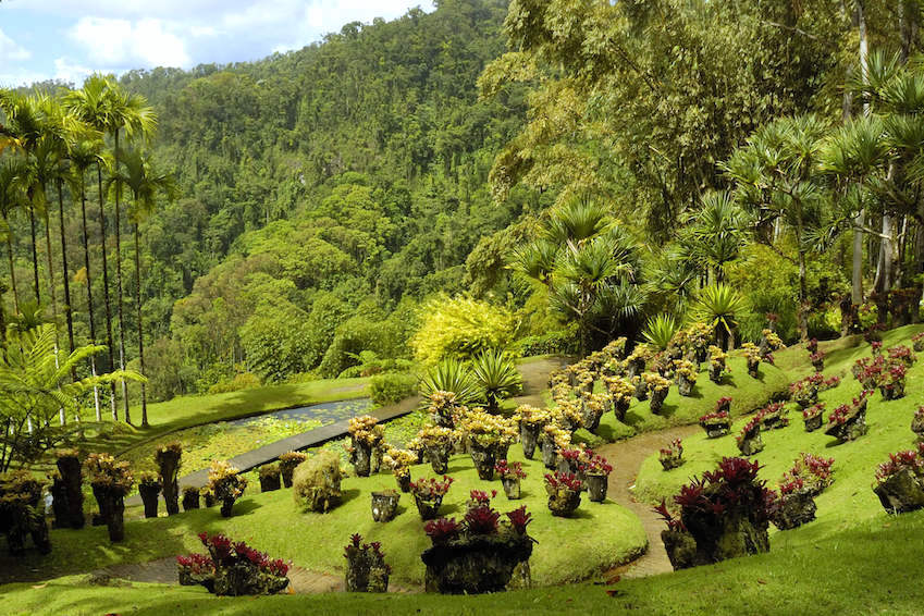 The island of flowers: The garden of Balata