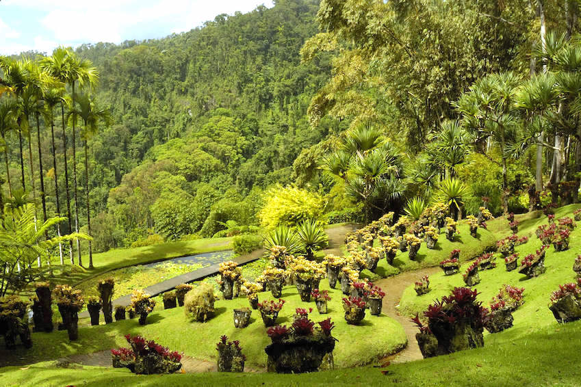 Balata garden, Martinique