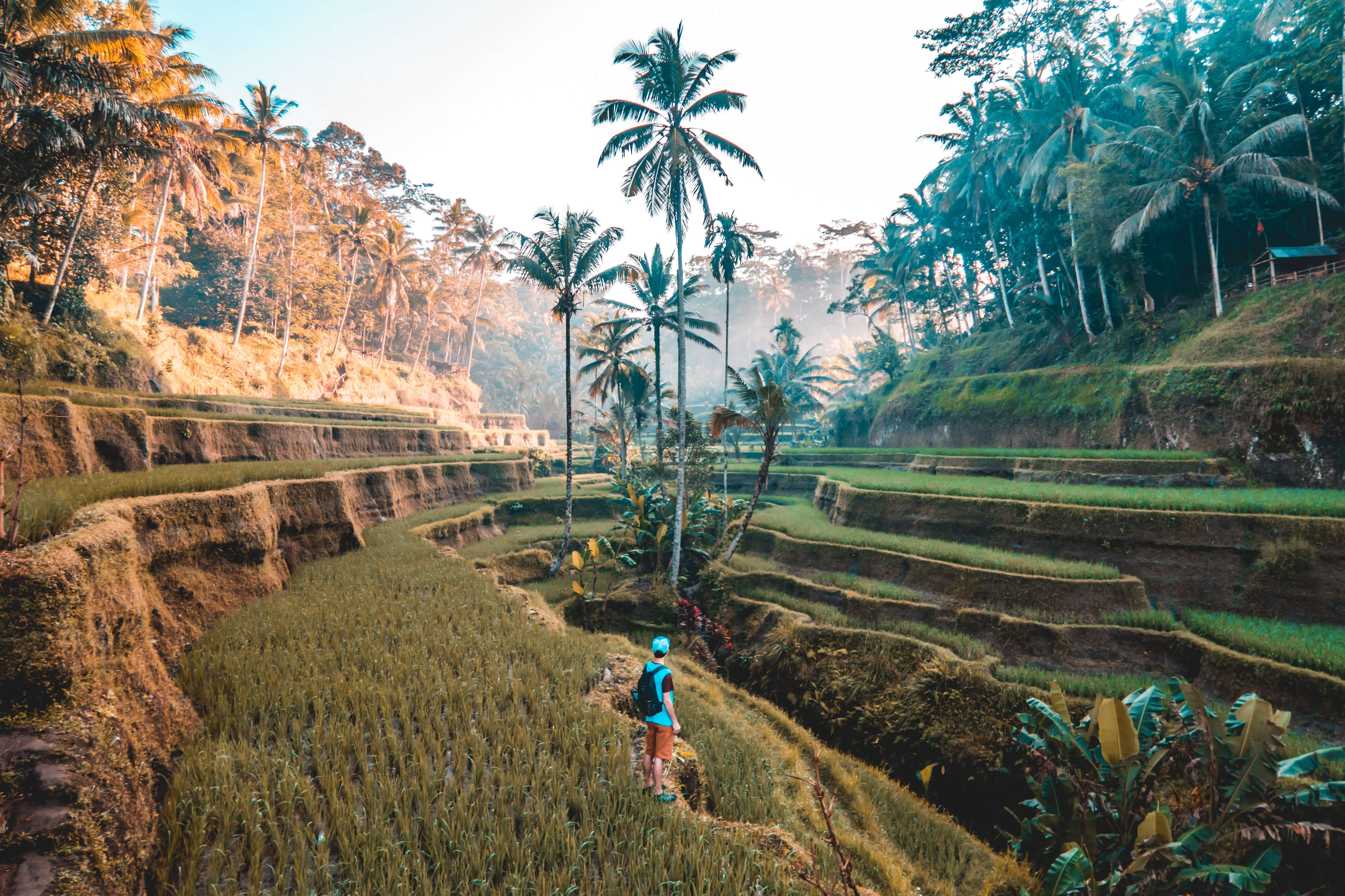10 Instagram pictures that will make you want to visit Indonesia