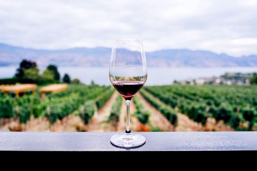 3- Wine