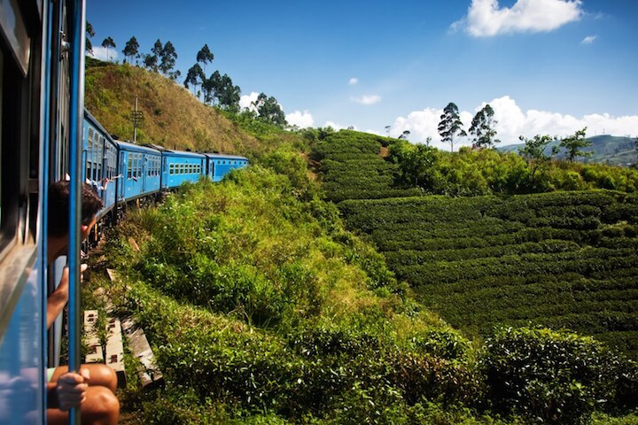 Other Sri Lankan national parks: Uda Walawe and Kumana Park
