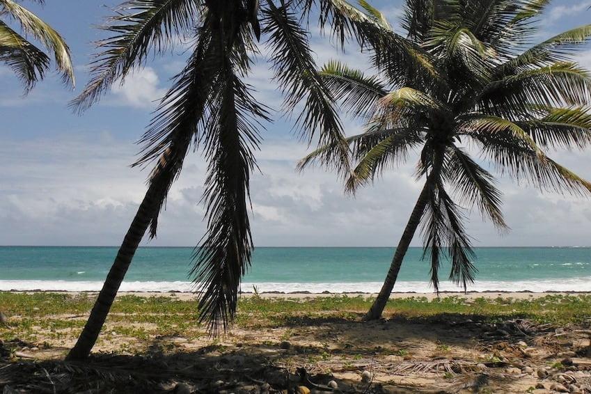 Beach of Grand Macabou