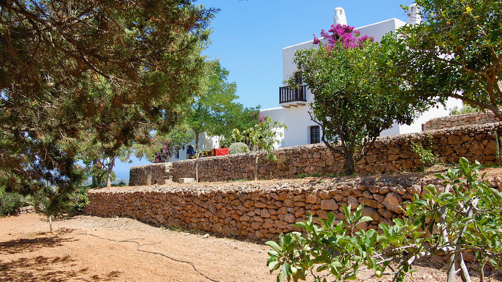 Villa Villa Jupiter, Location à Ibiza