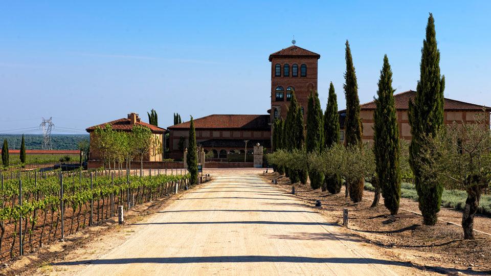 The winemaker 39 s house villa rental in salamanca duero for Villas 400 salamanca