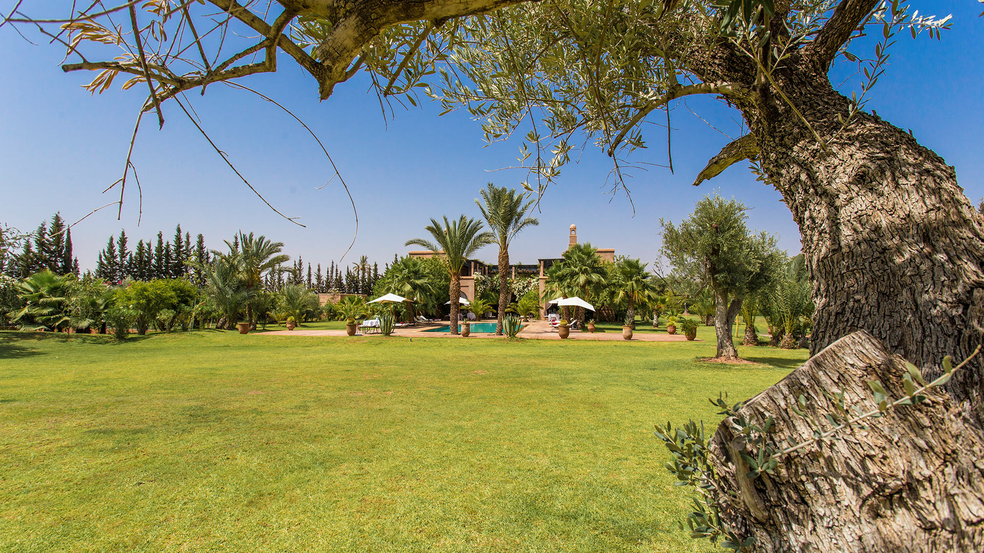 Villa Dar Marja, Location à Marrakech