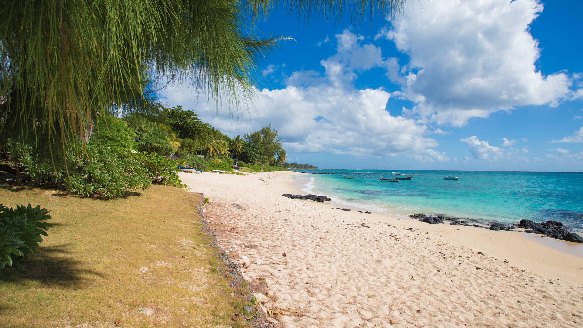Villa Villa Talipot, Rental in Mauritius North