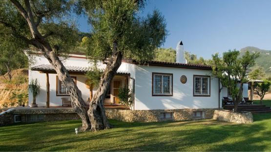 Villa Casa Pippo, Rental in Tuscany
