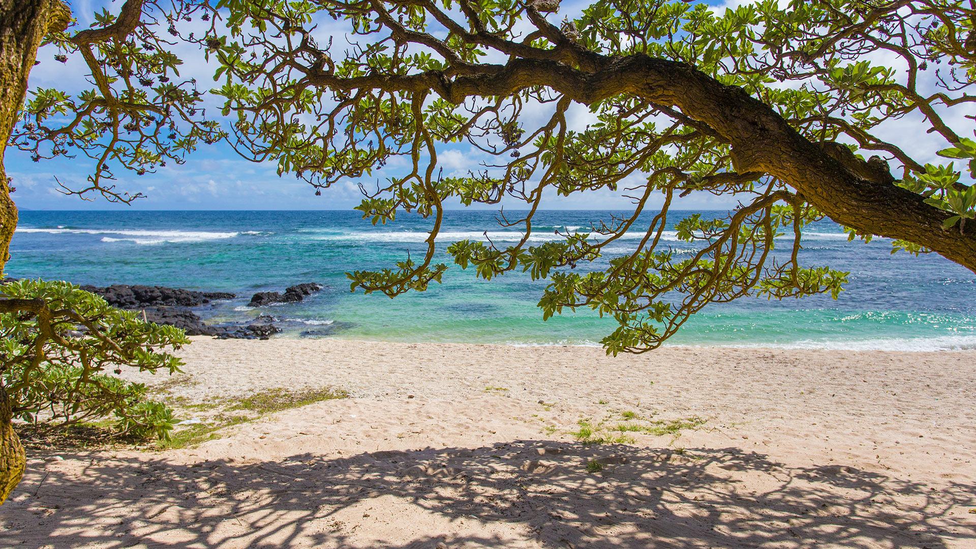 Villa Villa Verveine, Rental in Mauritius East