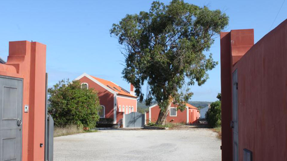 Villa Villa Redwood, Location à Centre