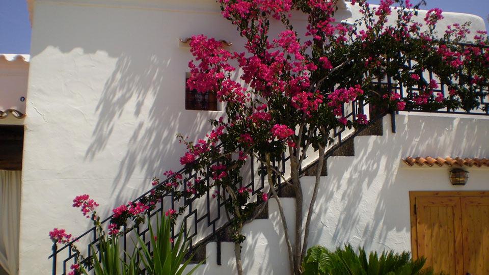 Villa Villa 671, Location à Ibiza